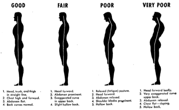 Tips to Maintain Good Posture - Dr. Rick T